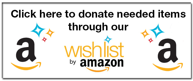 Amazon.Wish_.List_.Image_